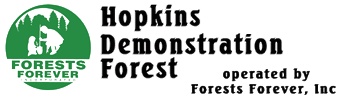 Hopkins Demonstration Forest